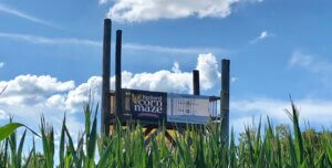 Corn Mazes Near Me - Country Living IMG
