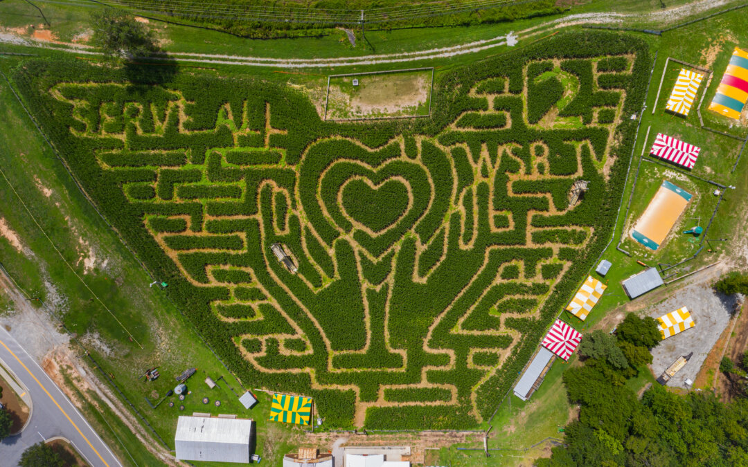 WSBTV People 2 People Visit the Buford Corn Maze
