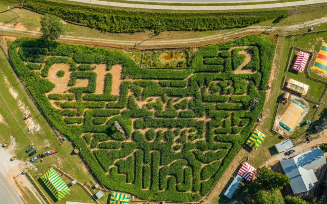 IN MEMORY OF 9-11: Buford Corn Maze Offers Free Saturday Admission for all First Responder Families